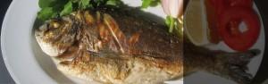Imagen pescado fresco